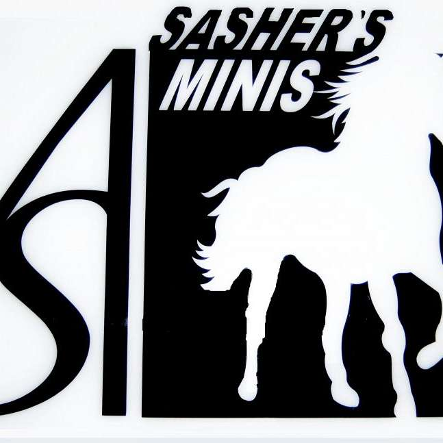 SAshers Miniatures