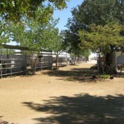 Odyssey Ranch