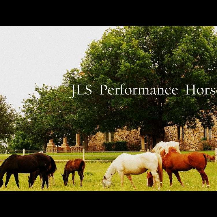 JLS Performance Horses