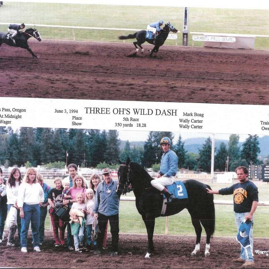 dream weaver quarter horses