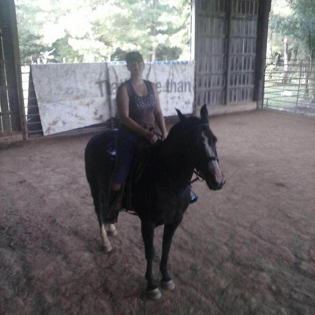 Bond Performance Horses