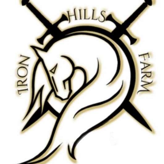 Balmez Paint Horses