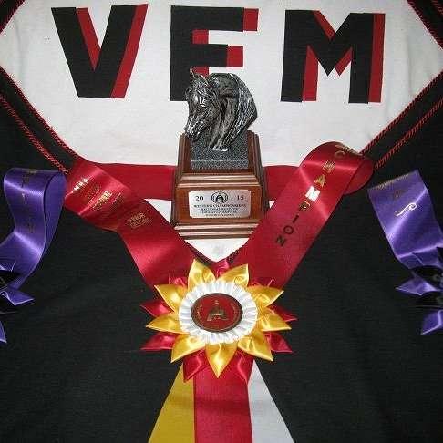 VFM Miniature Horses