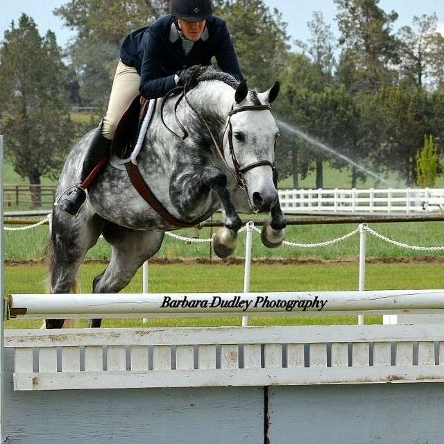 Parkwood Equestrian Center