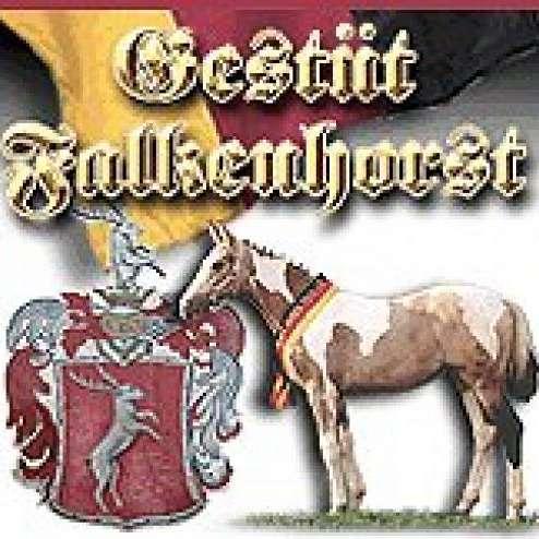 Gestuet Falkenhorst